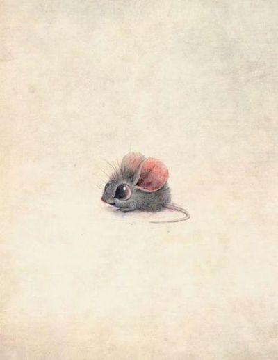 Mouse Cute Pretty