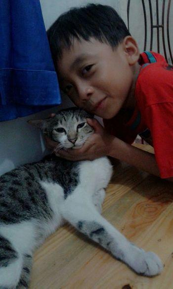 My Cats My Bestfriend