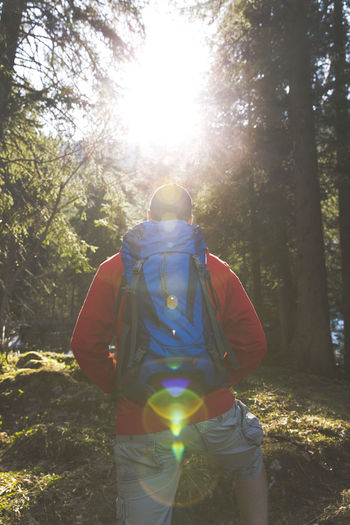 hiking man with blue backpack and red sweater in the forest Walk Wood Backpack Casual Clothing Day Forest Hiker Land Leisure Activity Lens Flare Lifestyles Men Nature One Person Outdoors Plant Real People Rear View Sun Sunlight Sunny Three Quarter Length Tree Walking WoodLand