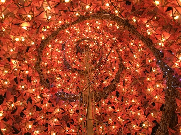 Low angle view of illuminated lanterns hanging on christmas tree