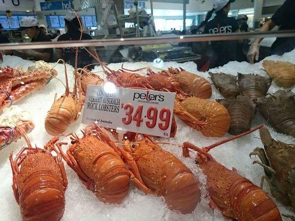 Food And Drink Sydney Fish Market Market Fish Fish