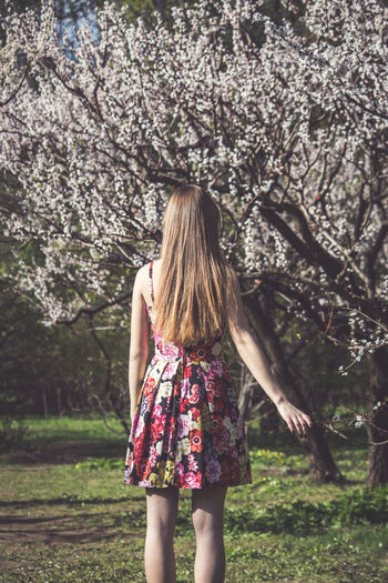 Adult Adults Only Beauty Blossom Branch Carefree Day Flower Grass Long Hair Nature One Person One Woman Only One Young Woman Only Only Women Outdoors People Rear View Tree Young Adult