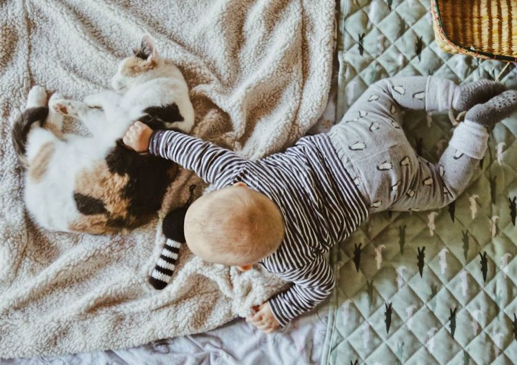 High angle view of baby boy playing with cat while relaxing on bed at home