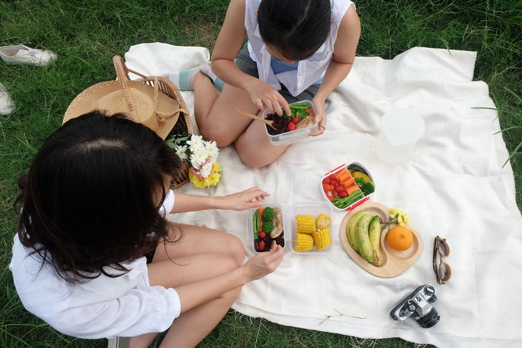 Bonding Boys Casual Clothing Childhood Day Food Food And Drink Friendship Fruit Girls Grass Healthy Eating High Angle View Holding Leisure Activity Lifestyles Outdoors Plate Real People Sitting Togetherness Two People Vegetable Women Young Women