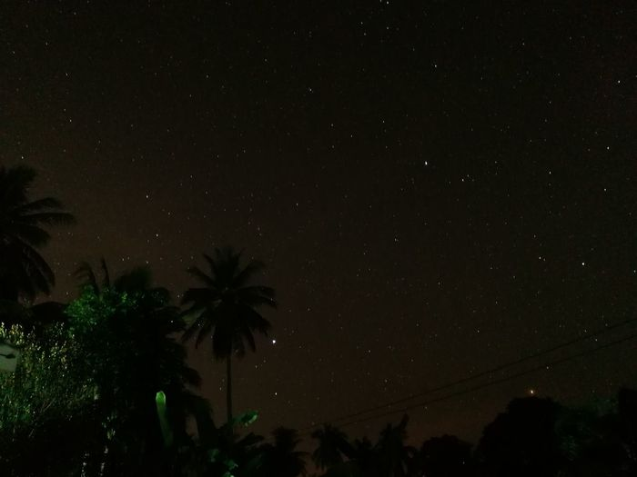 HUAWEI VKY-L29 F/1.8 1/124995483 Sec Iso 400 Night Palm Tree No People Nature Scenics Tree Beauty In Nature Sky Outdoors via Fotofall