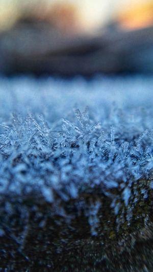 -2'C Snowflake