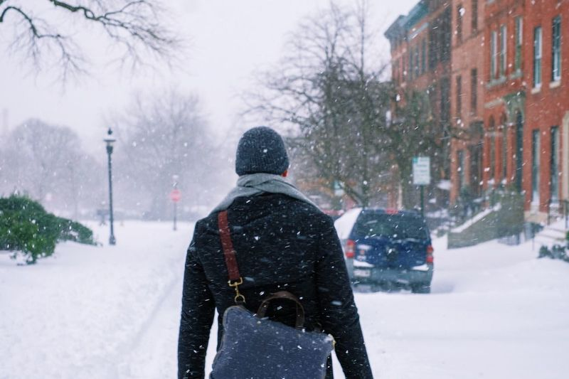 A man walks to work in a blizzard Baltimore Blizzard Brownstones City Cold Cold Temperature Covered Covering Emergency Frozen Lifestyles Man Man Walking Real People Season  Snow Street Warm Clothing Weather White White Color Winter