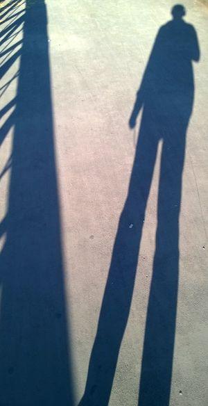 Alone Myself Random Walk Shadow Zürich