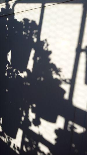 Shadowplay Light And Shadow Balcony Life Sunny Saturday No Edit/no Filter Kortedala