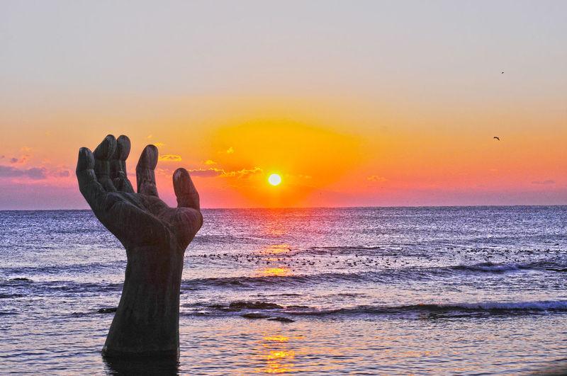 sunrise Human