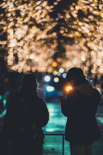 Rear view of couple standing against illuminated trees at night