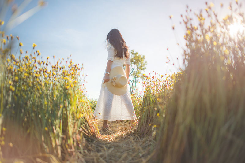 woman and yellow flowers White Dress Adult Beauty In Nature Day Dress Fashion Field Flower Flowering Plant Growth Hair Hairstyle Land Leisure Activity Lifestyles Nature One Person Outdoors Plant Real People Selective Focus Standing Three Quarter Length Women Young Adult