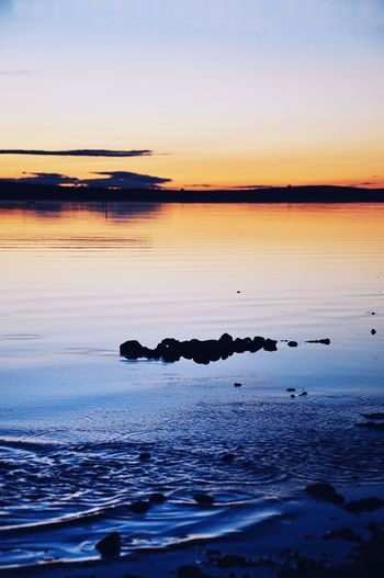 Water Sunset Beauty In Nature Sky Sea Tranquility Scenics - Nature Tranquil Scene Nature Orange Color Land Idyllic Animal Themes No People Animal Reflection Non-urban Scene Beach Horizon Over Water Outdoors