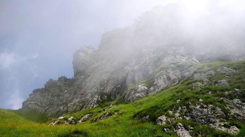 Oltre. Blue Sky Color Blue Light The Sky ... Mountains Rocks Tree Mountain Fog Forest Sky Cloud - Sky Landscape