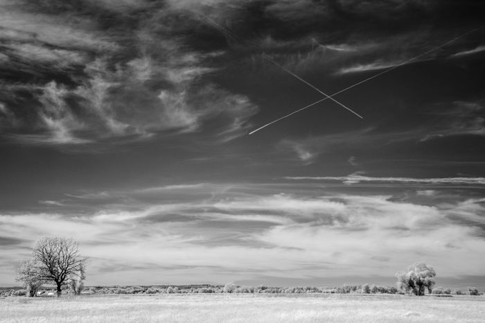 Blackandwhite Field Infrared Landscape Scenic Sky And Clouds Tranquil Scene Tree Trip