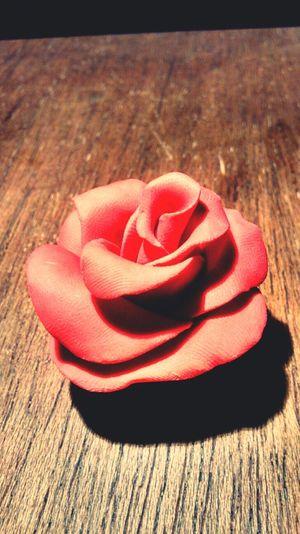 Roses Free Time Plasticine Taking Photos