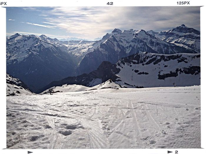 Ready to go Skiing ❄