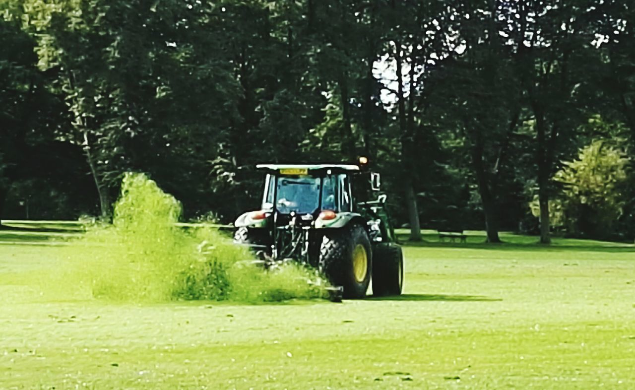 tree, grass, golf cart, golf, golf course, field, green color, transportation, nature, day, men, outdoors, growth, green - golf course, real people, spraying, one person, golfer, people