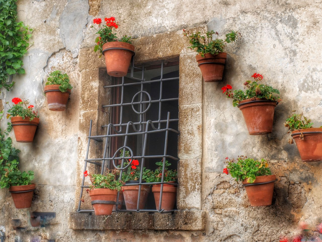 potted plant, plant, growth, architecture, window box, flower, day, building exterior, outdoors, built structure, no people, window, watering can, nature
