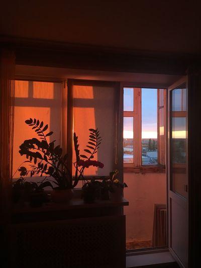 Orange color Nofilter Orangesunset Sunset Window Indoors  Glass - Material No People Nature Water Sea