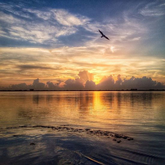 Sunrise And Clouds Sky_ Collection IPS Water