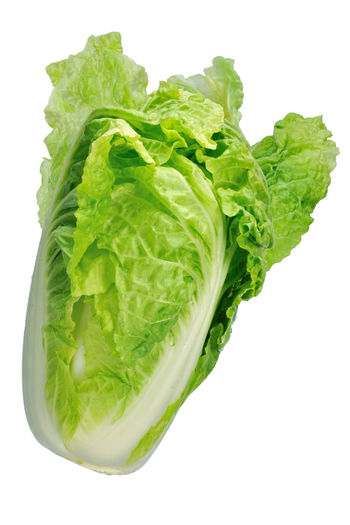 Agriculture Chinese Cabbage Close-up Food Food And Drink Fresh Freshness Green Color Healthy Eating Ingredients Leaf Leaf Vegetable Lettuce Nature No People Raw Food Studio Shot Vegetable Vegetables White White Background