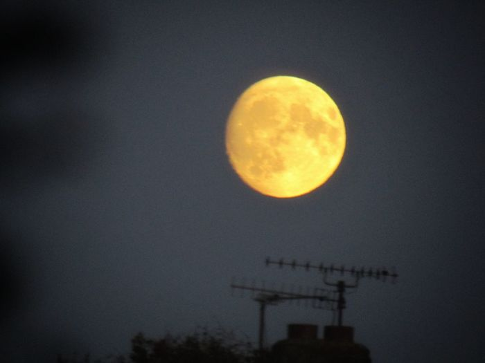 Orange Moon Nature Beauty In Nature EyeEm Best Shots EyeEm EyeEm Selects Orange Color Delicate Beauty Astronomy Moon Space Clear Sky Moon Surface Sky Planetary Moon Space And Astronomy Full Moon Astrology