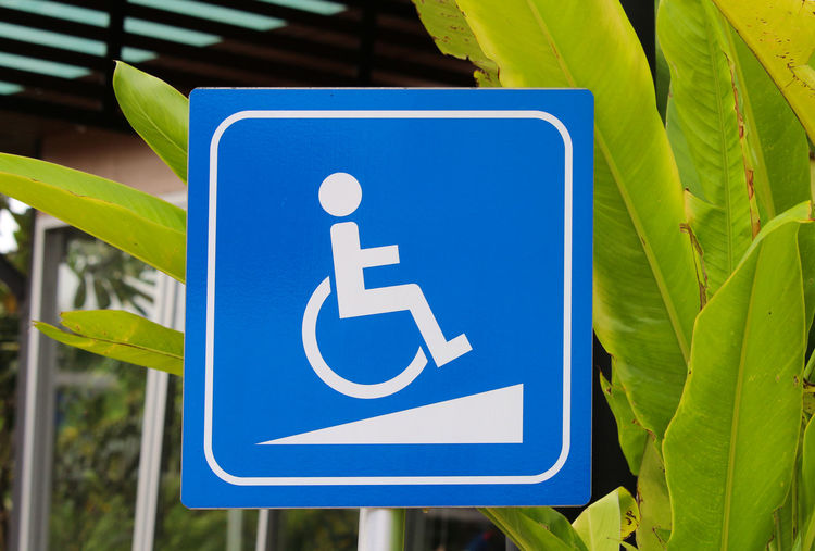 Close-up of disabled sign against plants