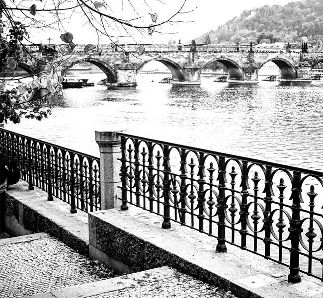 Monochrome Photography Water Bridge - Man Made Structure River Architecture Outdoors Tree Railing Nature No People Built Structure