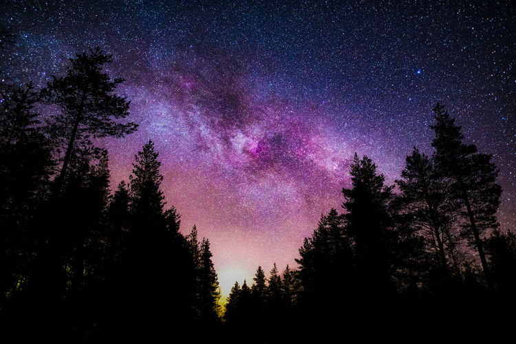 Starry night sky and Milky Way Astronomy Sky Space Scenics - Nature Star - Space Beauty In Nature Night Galaxy Nature No People Low Angle View Constellation Milky Way Purple Silhouette Outdoors Hello World Taking Photos Nature_collection Landscape Stars Exploring Scenics Check This Out Colors