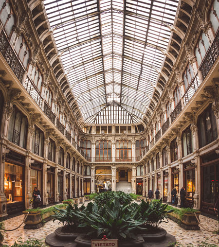 Turino Architecture Built Structure Ceiling Day Flower Gallery Growth Indoors  Italy Panno Plant Roof
