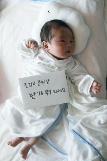 Baby Korean Thanksgiving Day