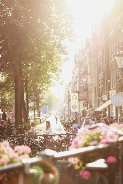 Golden Amsterdam afternoons First Eyeem Photo