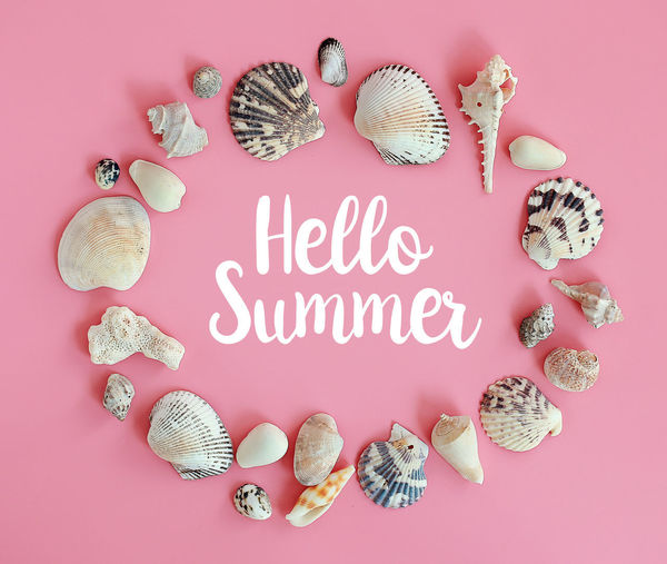 Background Beach Beach Party Beauty In Nature Blancoynegro Collection Copyspace Coral Greeting Happy Happy Holidays Happy Vacation  Hello Summer Holiday Nature Pink Pink Color Seashell Seaside Shell Summer Summer Sale Text Variety Wording Live For The Story