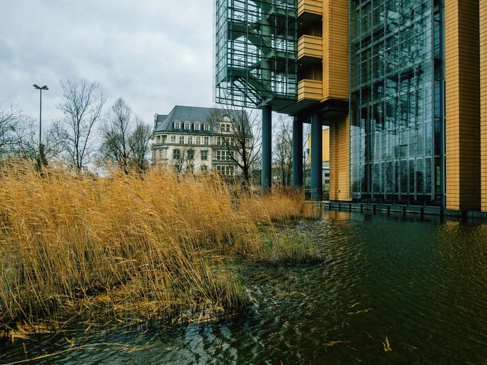 Architecture Built Structure Building Exterior Tree No People City Outdoors Sky Grass Day Water Growth Bare Tree Nature Skyscraper Capture Berlin Berlin Germany Urban Adapted To The City The Architect - 2017 EyeEm Awards