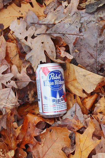Leaf Autumn Change Text No People Day Close-up Nature Outdoors My Point Of View EyeEmNewHere The Week On EyeEm EyeEm Selects Beer Can Littering Multicolored Second Acts