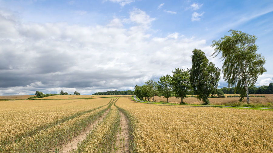 Scenic View Of Farm Against Cloudy Sky