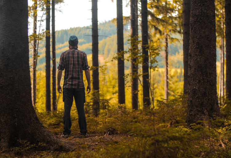 male hiker standing outdoors in a forest Backpacking Camping Figure Hiking Standing Travel Trekking Copyspace Forest Hiker Landscape Male One Person Outdoors Person¨