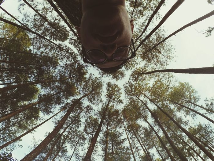 Tree Low Angle View Sky Outdoors Nature Growth One Person Forest Tree Trunk Branch Day Human Body Part One Man Only People Adults Only Low Section Adult Only Men Beauty In Nature Young Adult