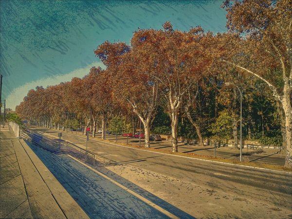 Malaga Mobilephoto Mobilephotography Colors Mobileart SPAIN Andalucía España🇪🇸