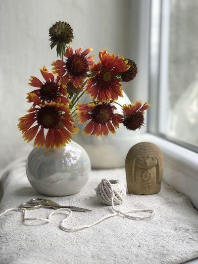 Indoors  Vase