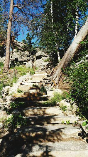 Hiking Trail , Black Hills , South Dakota