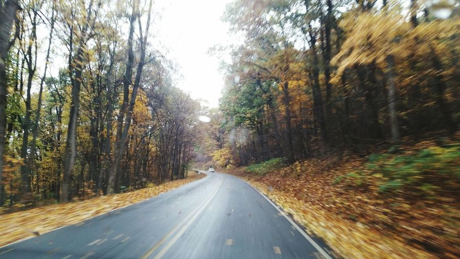 Skykinedrive Shenandoah Valley - Virginia Autumnimvirginia