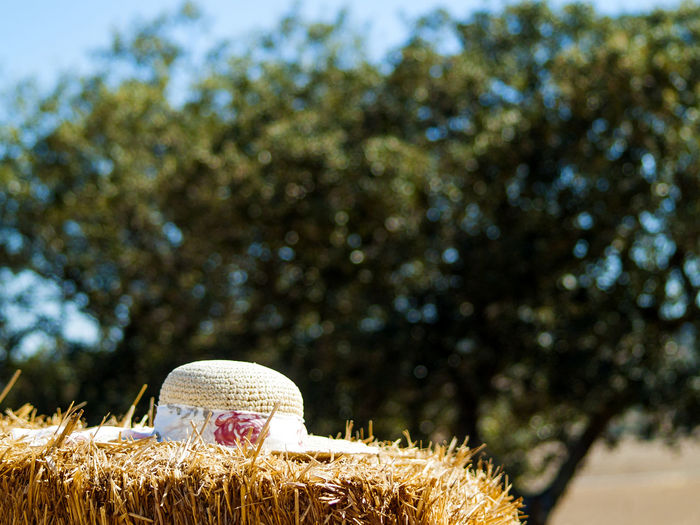 Composition Fashion Field Hat Summer Views Summertime Bale  Bales Close-up Day Decoration Enjoy Enjoying Life Fields Focus On Foreground Nature Outdoors Protection Straw Straw Bales Straw Hat Summer Woman Hat The Week On EyeEm