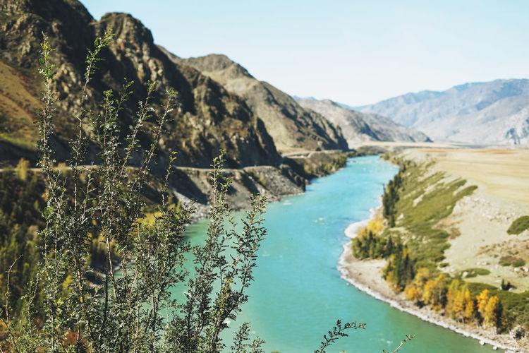View of the turquoise river katun and altai mountains, autumn season