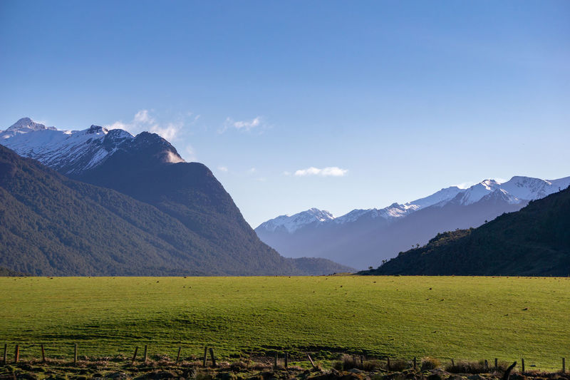 Beautiful mountain with green grass captured in New Zealand Mountain Sky Scenics - Nature Mountain Range Environment Landscape Beauty In Nature Tranquil Scene Tranquility Nature Land Idyllic No People Non-urban Scene Rural Scene Green Color Field Grass Day Plant Outdoors Mountain Peak