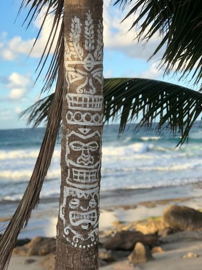 Art EyeEm Best Shots - Nature EyeEm Selects EyeEm Best Shots EyeEm Puertoricotourism Puertorico Sea Communication Text Focus On Foreground Sky Beach Horizon Over Water Close-up Tree No People Water Scenics Tree Trunk Day Outdoors Nature Tranquility Beauty In Nature