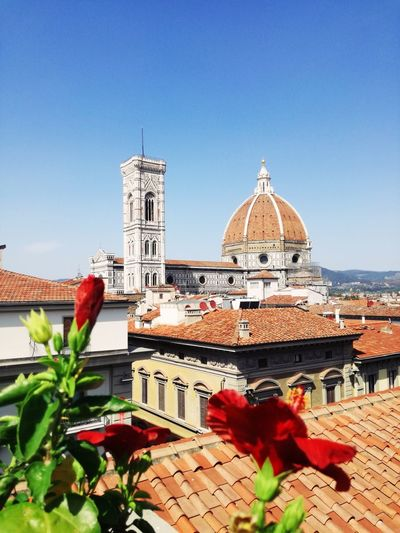 Your Ticket To Europe Flixbus Florence Italy Firenze Tuscany Tuscany Countryside Italy🇮🇹 Architecture Dome Sky Red Flower Vacations Travel Destinations History
