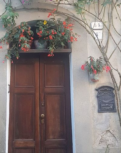 Door Entrance Architecture Hanging Flower Building Exterior Built Structure Outdoors Red No People Growth Day