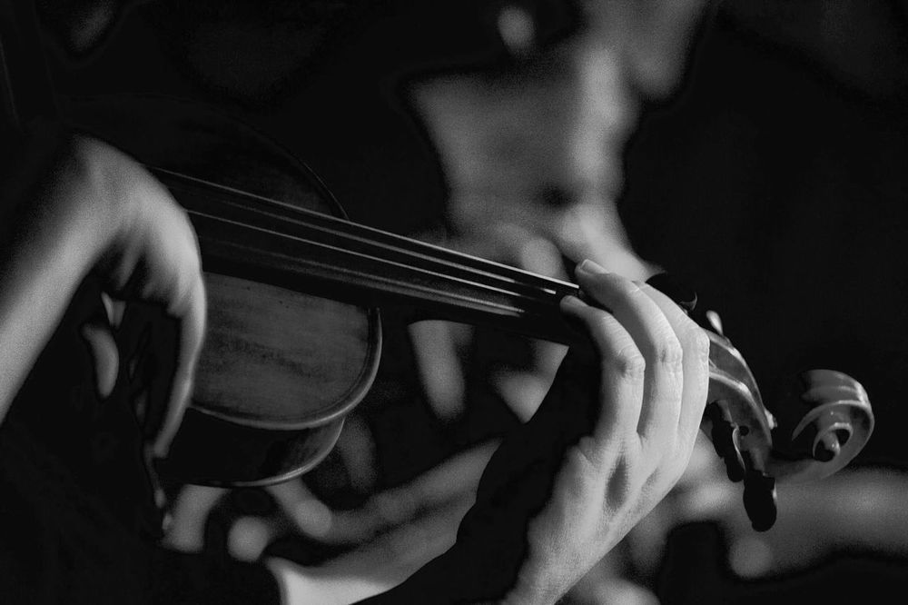 Black & White of Violin black and white friday EyeEm Selects One Person Music Human Body Part Musical Instrument Real People String Instrument Human Hand Lifestyles Hand Close-up Musical Equipment Midsection Arts Culture And Entertainment Indoors  Adult Body Part Holding Finger